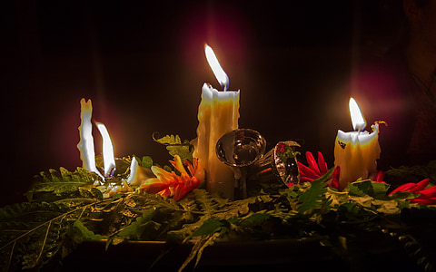 white candles on green leaves