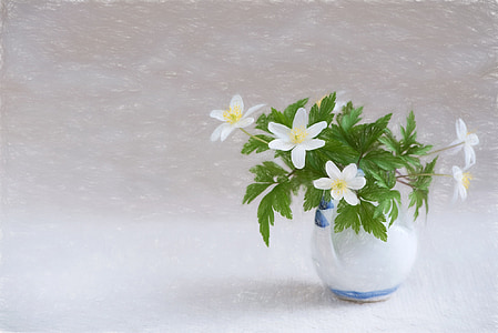 white flowers and green leaves on clear glass vase
