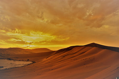 Sahara desert during golden hour