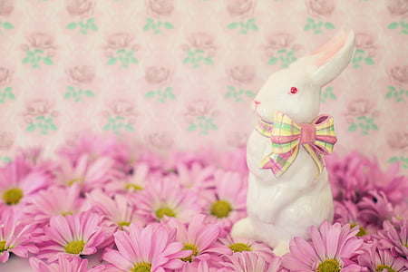 selective focus photography of white rabbit on pink petaled flower field
