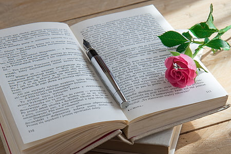 pink rose on book beside fountain pen