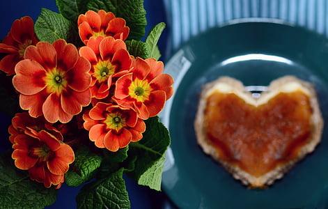 close up photography of orange flowers