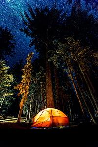 orange and yellow tent under night sky