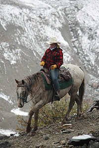woman riding white horse
