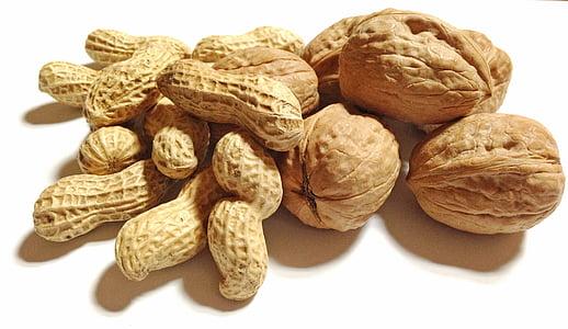 nut lot