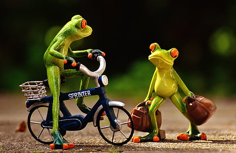 frog riding bicycle