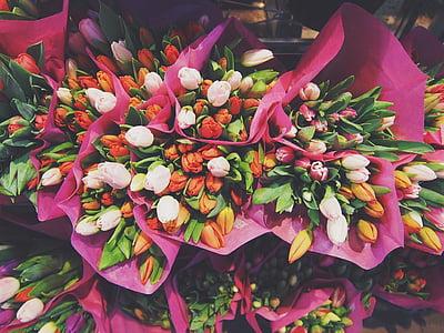 assorted-color tulip bouquet lot