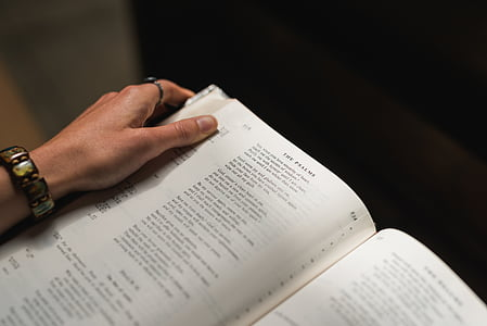 person holding opened book