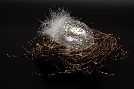 easter egg, egg, glass, fragile, feather, white