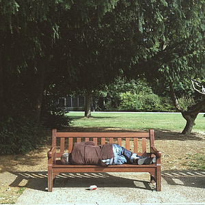 person sleeping on bench near tree