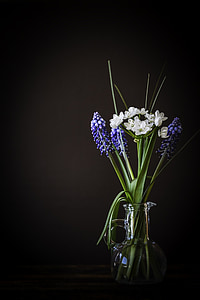 rule of thirds photography of white and blue flowers
