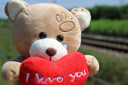 brown bear carrying heart plush toy