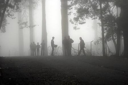group of men on fog covered forest