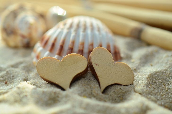 two heart wood on gray sand