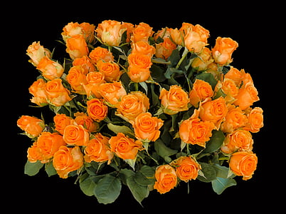 bouquet of orange rose flower