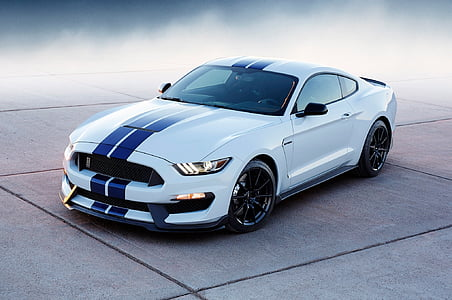 white and blue Ford Mustang on gray concrete road