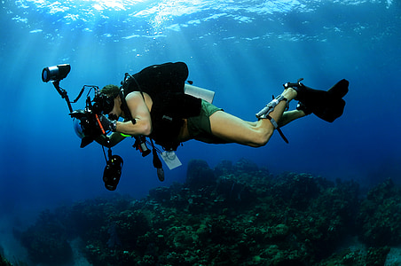 person filming underwater photo during daytime