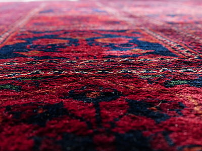red and blue floral area rug in low angle photography