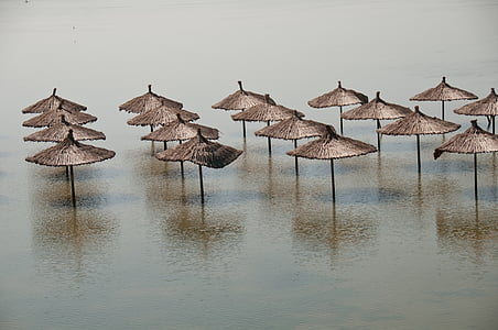 brown parasols on body of water