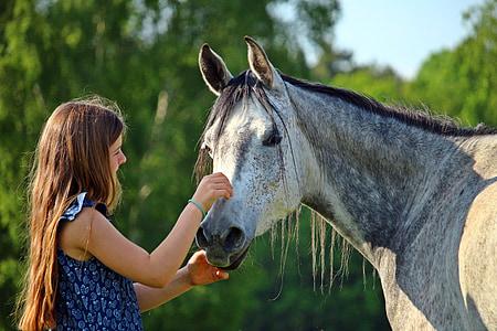 girl holding horse