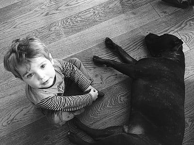 toddler sitting on floor beside black dog