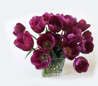 closeup photo of purple tulips in glass vase