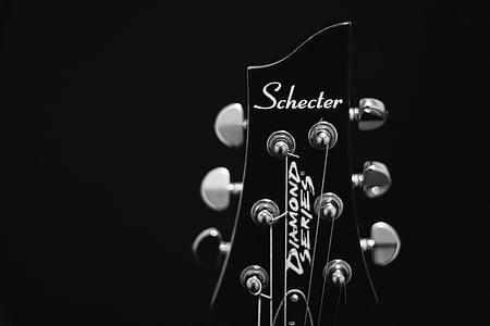 black Schecter guitar headstock
