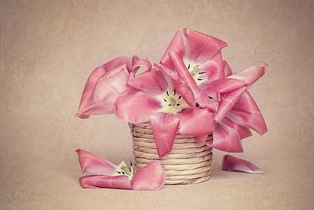 pink petaled flowers in brown rope can