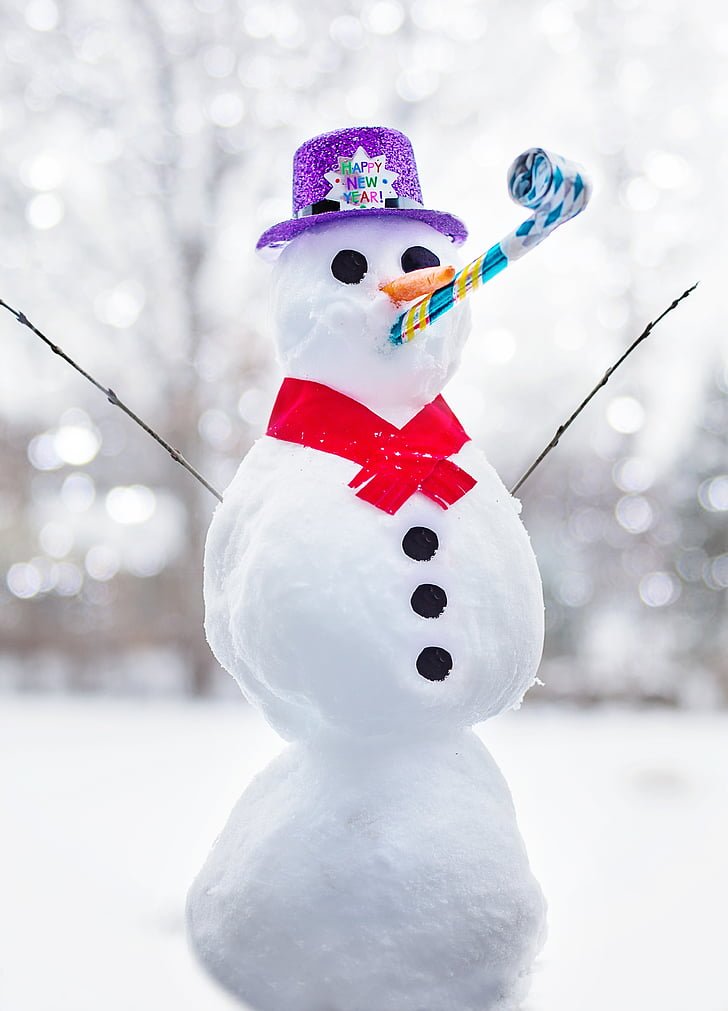 shallow focus photography of snowman