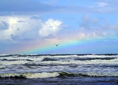 bird flying over seawave during daytime