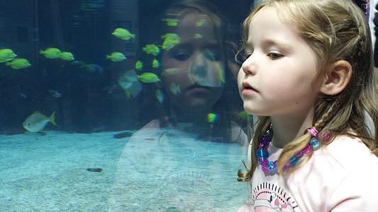 girl in pink shirt near aquarium