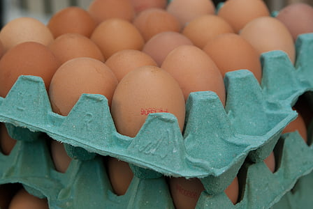eggs, market, hens, egg carton, egg, food and drink