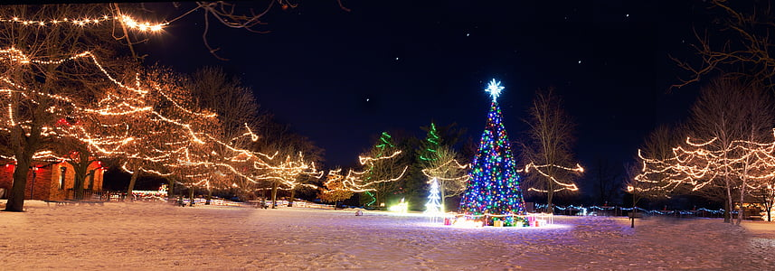 Christmas-themed park during night