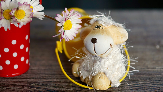 white sheep plush toy beside white daisy flower