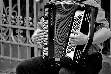 person playing accordion