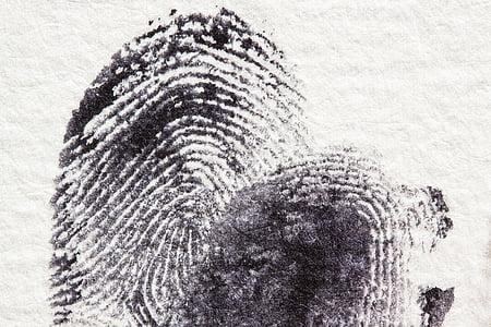 close shot of finger print