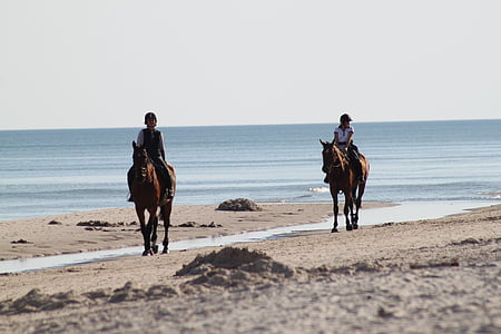 two person riding horse beside seashore during daytime
