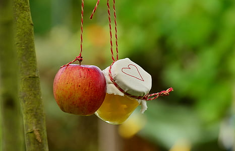 red apple and clear glass jar hanging on red strings in shallow focus shot