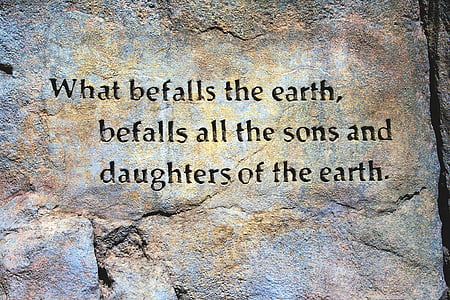 what befalls the earth. befalls all the sons and daughters of the earth. rock carved quote