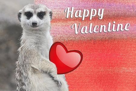 white animal with Happy Valentine text overlay