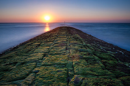 landscape photography of green mossy pavement under clear sky during daytime