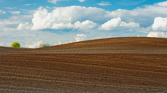 landscape of brown soil