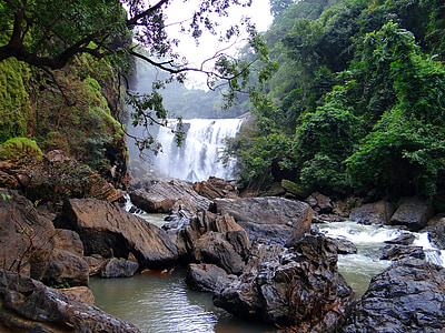 lanscape photography of falls near trees
