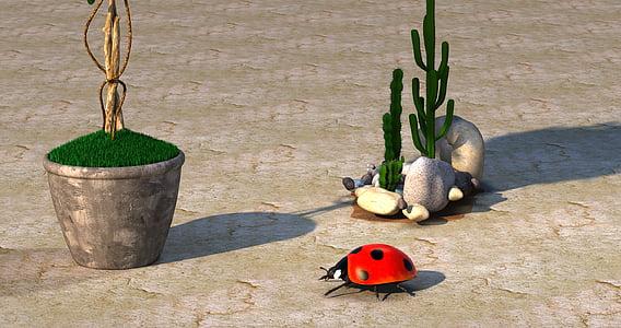 ladybug near cactus plant