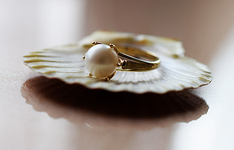 gold ring on top of shell