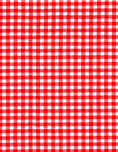 white and red checked textile