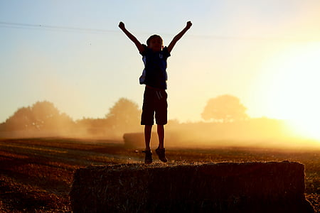 silhouette of jumping boy on green field