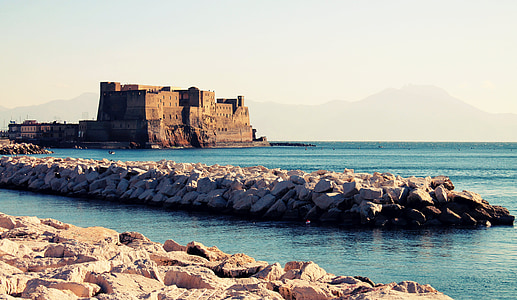 brown concrete castle near ocean during daytime
