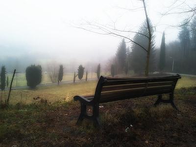 black wooden bench on park