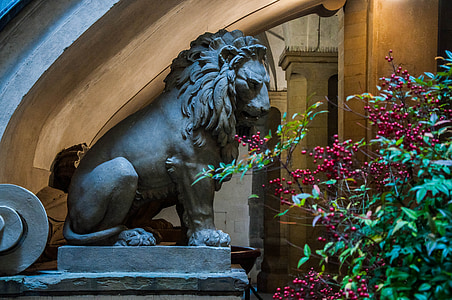 gray lion statue beside green plant